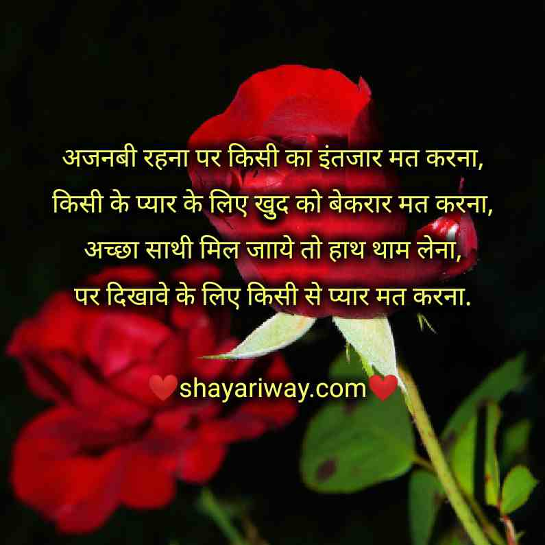 Friendship shayari hindi and english, tareef shayari, sayri hindi