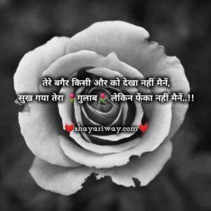 Tareef shayari in hindi, love shayari, mast shayari, new shayari